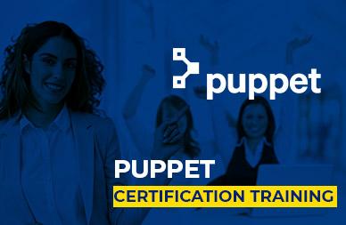 Puppet Online Training